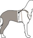 Harness Suspenders 1